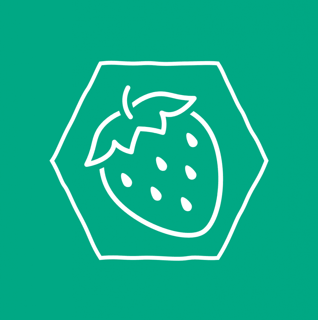 About CozyBerries: What is CozyBerries image