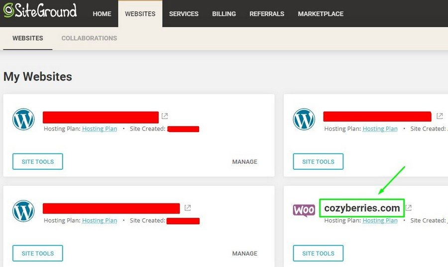 Proof of CozyBerries.com on Siteground Image