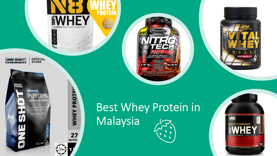 5 Best Whey Protein in Malaysia 2021: For Muscle Growth & Weight Lost image